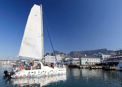 Waterfront Adventures in Cape Town - Escape Cat