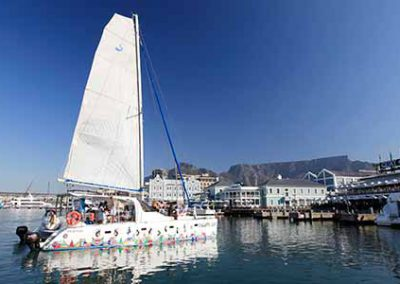 menu-boat-trips-cape-town-escape-cat