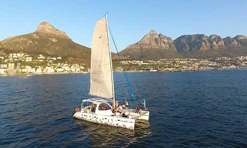 Champagne Cruise in Cape Town